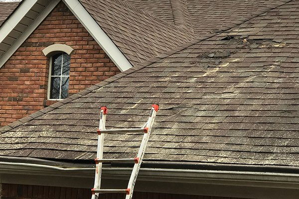 Roofing Maintenance Services